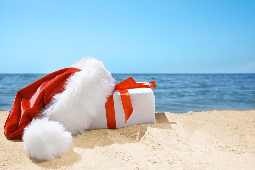 vacaciones-en-navidad